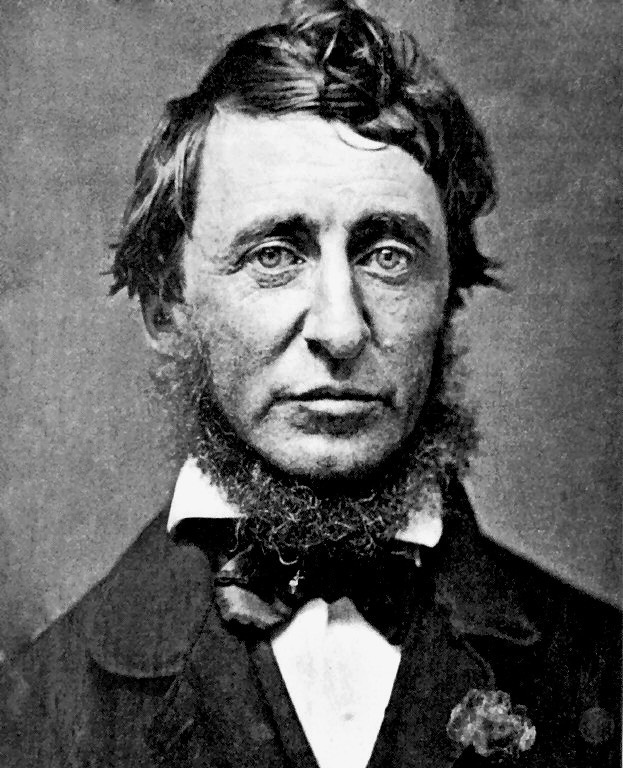 portrait Henry David Thoreau