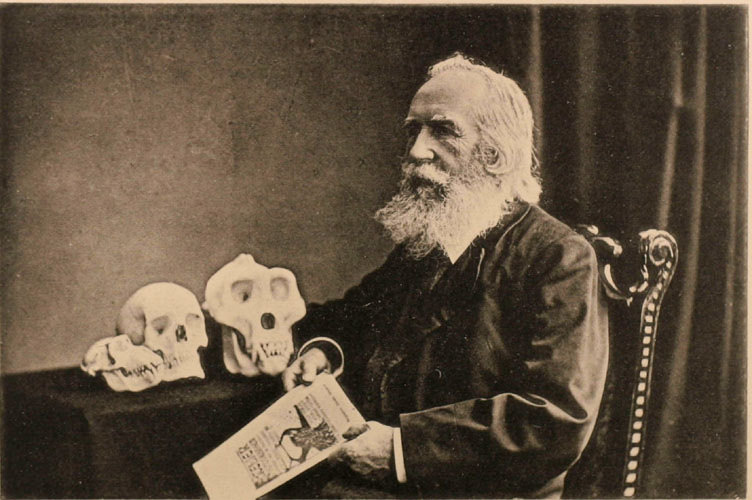 Portrait photograph of Haeckel as human evolutionist (1907).